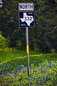 Texas Farm to Market Road 332 Sign with bluebonnets