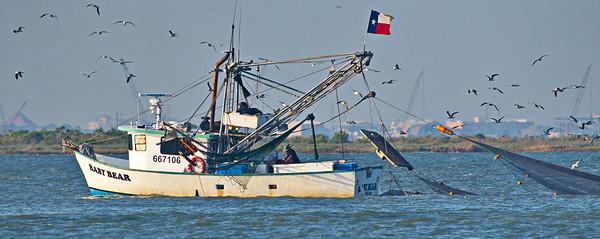 09292017_Texas_City_Dike_Shrimp_Boat_500_2283