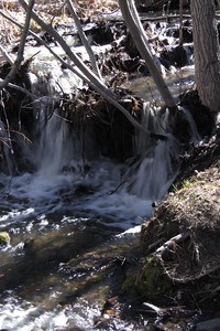 Thomas Creek.  One of many little waterfalls