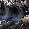 Thomas Creek.  One of many little waterfalls
