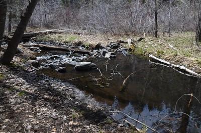 Last Chance Creek (below the dam)