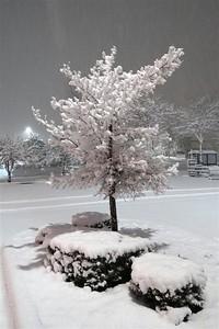 January 22, 20017 - A Snowy Night