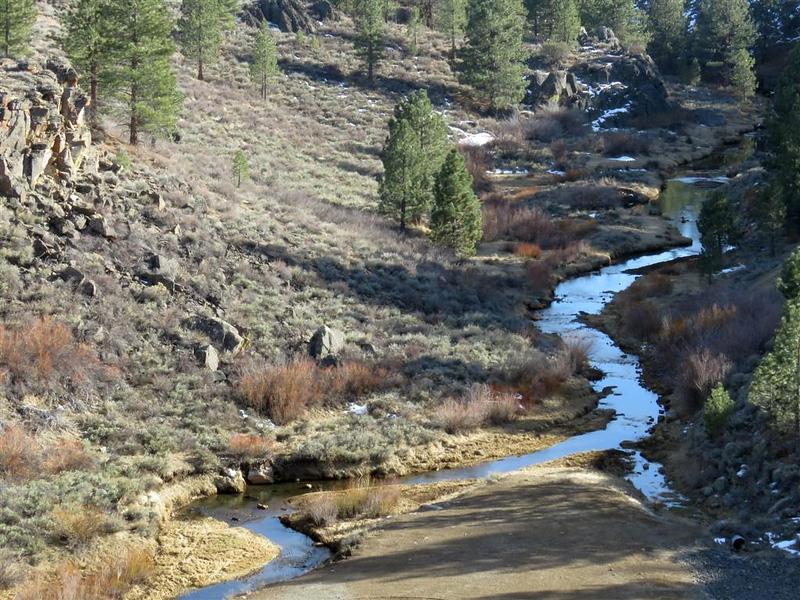 February 10, 2018 - Trip to Frenchman Reservoir - Last Chance Creek