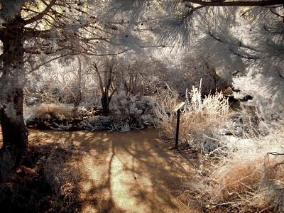 Rancho San Rafael - March 12, 2016