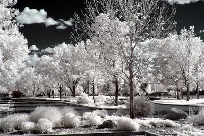 Mira Loma Park