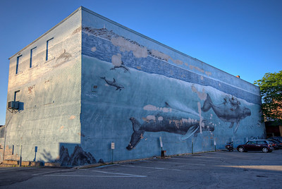 June 2, 2008; Day 31. It's Monday which means I'm in Portsmouth, NH. Some of you may recognize this as one of the Wyland Whaling Walls. This one is number 37, painted on June 14, 1993.  This scene depicts humpback whales near the Isles of Shoals, a set of 7 little islands shared between NH and Maine.  This HDR was created from six exposures.  The aperture was held constant at f/8; the shutter speed varied from 1/30s to 1/1000s in one-stop increments.  Photomatix did the work.  I also shot this wall using my fisheye lens. (Note to self: The fisheye really exaggerates an unlevel horizon!) You can see a lot of repairs to the building that are slowly obliterating this painting.  PS: Rotate 2 degrees PS: Crop away black bars PS: Color Balance: -5 Magenta to green PS: Unsharp Mask: 20-30-0