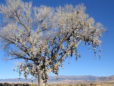 The Shoe Tree on U.S. 50
