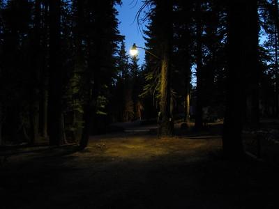 Evening At Summer Camp