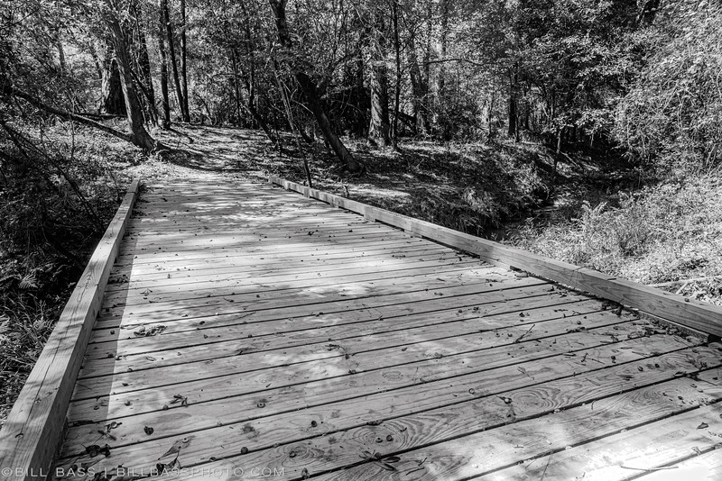 East Bridge - Spring Creek Nature Trail. One of several bridges built by the volunteer trail crew.