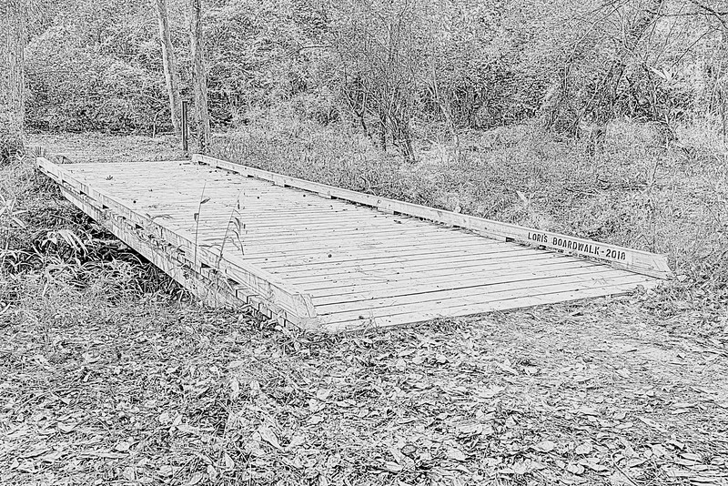 Lori's Boardwalk on the Spring Creek Nature Trail - The Woodlands, Texas