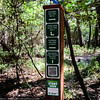 Finding your way along the Spring Nature Trail is easy. Sign posts like this one have been placed along the trail. There is also the ability to use your phone's QR code reader to view a map of where you are, and information about Bayou Land Conservancy's trail narration app from Travel Storys.