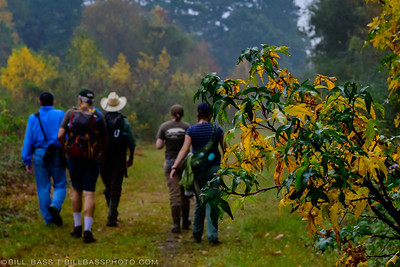 Patrons of the Spring Creek Nature Trail enjoy an early morning walk among the fall colors. Fall can be a beautiful time of year to walk the Spring Creek Nature Trail.