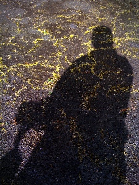 Me and My Shadow<br /> <br /> Yellow cornelian cherry tree buds in mud after a rain storm.<br /> <br /> iPhoneography
