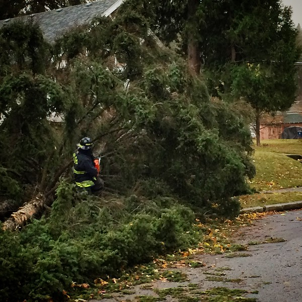 A firefighter works to remove a tree blocking E. 17th Ave. near S. Regal St. during a windstorm in Spokane, Wash., Tuesday, Nov. 17, 2015. (Young Kwak)