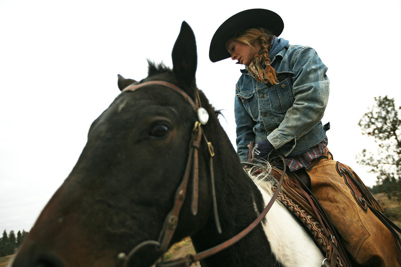 Cody Dix Harris, left, guides cattle to a fence at Williams Place at Lazy H Ranches, in Cheney, Wash., on Monday, November 7, 2011. (Young Kwak Special to the Pacific Northwest Inlander)