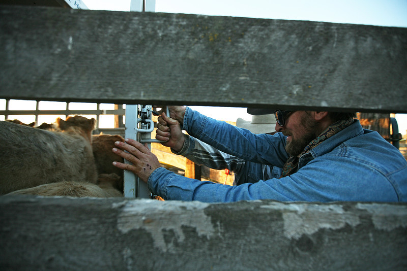 Cody Dix Harris and Nate Gutzwiller, not pictured, close a trailer door at Williams Place at Lazy H Ranch, in Cheney, Wash., on Tuesday, November 8, 2011. (Young Kwak Special to the Pacific Northwest Inlander)