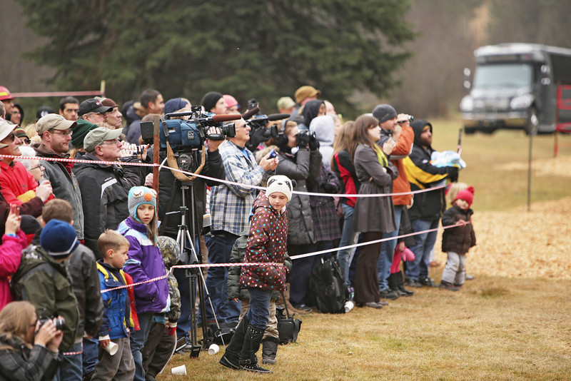 Members of the media and the general public watch an eighty-eight foot Engelmann Spruce, destined to be the U.S. Capitol Christmas Tree, cut, in the Colville National Forest, in Pend Oreille County, Wash., on Friday, November 1, 2013. (Young Kwak/The Pacific Northwest Inlander)
