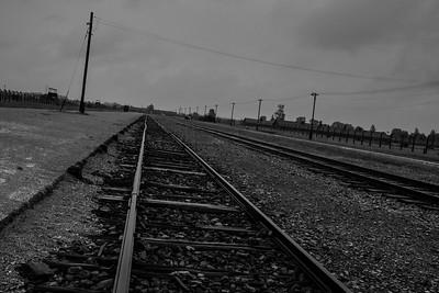Rail line to the gas chambers, Birkinau.