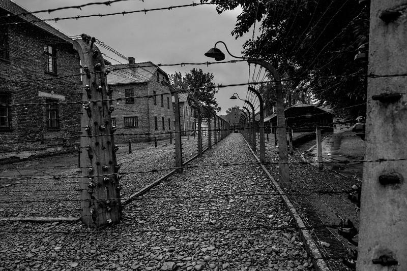 The fence line, Auschwitz.