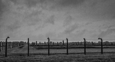 Fenceline, Birkinau.