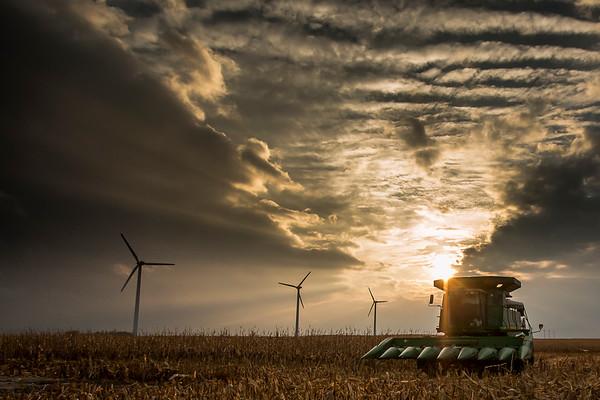 Harvest time in Hamilton County  - North Central Iowa