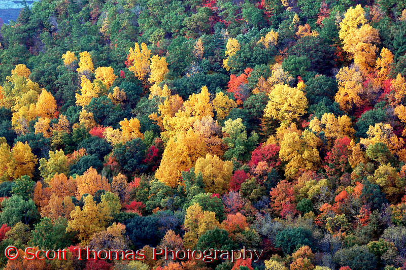 Fall color explosion can be seen on the hills surrounding the gorge.  The fall colors took their time in 2007 and, in what seemed like overnight, burst out in late October.  This picture was taken on October 20.  <b>Hey, there's another page.  Click below to see more!</b>