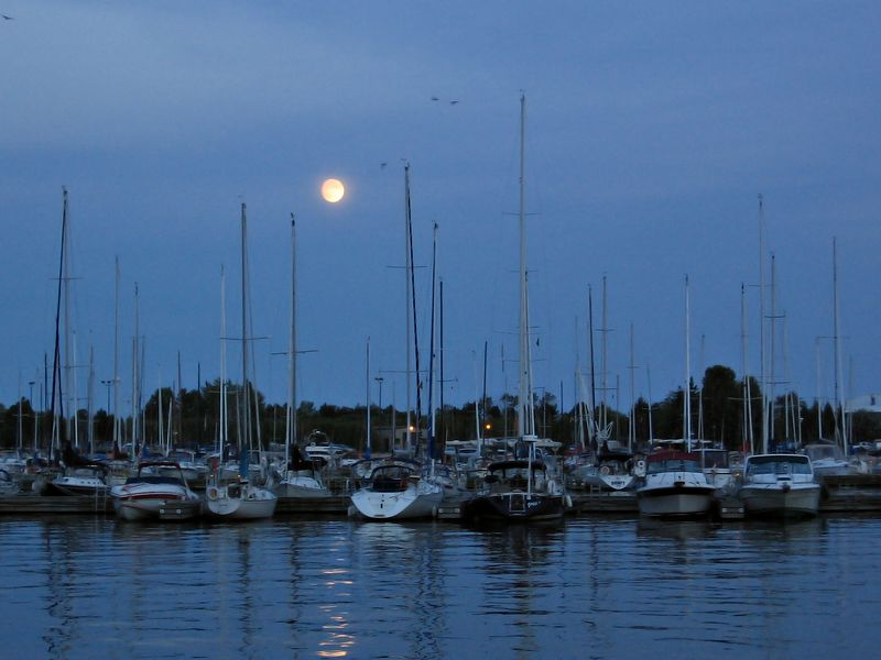 And as night falls, the full moon rises over the marina.