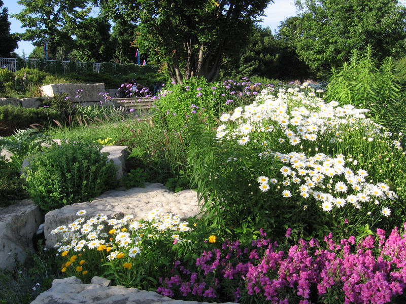 The City of Toronto maintains these beautiful flower gardens along the Humber Bay Promenade.