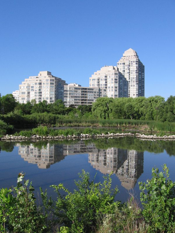 Nearby, Mimico Creek provides a natural wetland habitat, and a welcome escape from the city's bustle.