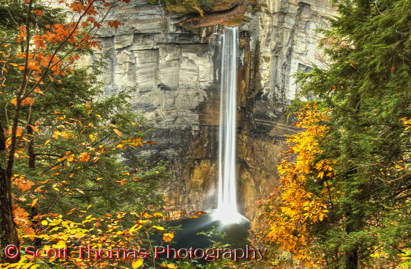 """There is a very accessible <b>Falls Overlook</b> on the north side of the gorge.  Take the Taughannock Park Road to a large parking area and <a href=""""http://stphoto.wordpress.com/2009/10/19/view-95-falling-water/"""" target=""""new"""">you can walk down some steps and get a grand view of the falls, pedestrian bridge and gorge viewing area</a>. Click on the link for a view of the Overlook.  Here's a photo tip for you.  For a more natural view, like this one, walk up the North Rim Trail from the parking lot about 200 feet and you'll come to a fence and you'll see the falls framed by trees.  Use hyperfocus to get both the foreground trees and falls in focus or, if you'd like, you can purchase this photo. :-)"""