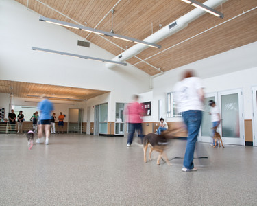 Flexible space in the Behavior and Training Center creates a fun and open environment for dogs and their owners to participate in a plethora of programs, from obedience to agility to Potter Pet University and more.