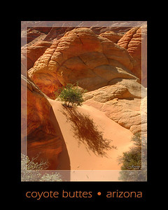 Coyote Buttes is a section of the Paria Canyon-Vermilion Cliffs Wilderness, halfway between Kanab Utah and Page Arizona. ORDER #74102