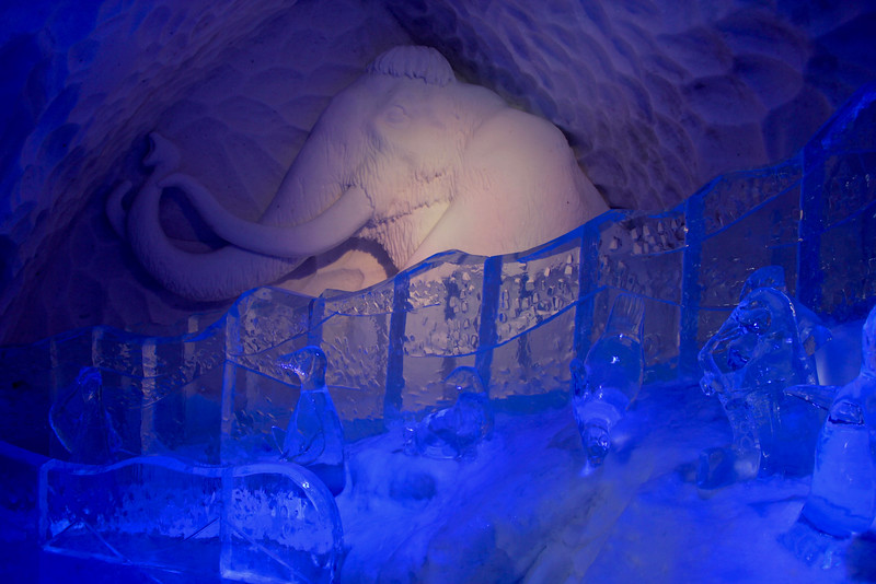 ice slide inside of the ice hotel