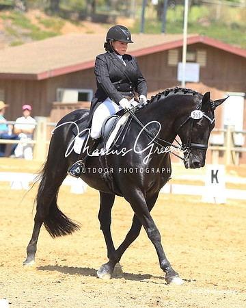 565 Cheval Noir