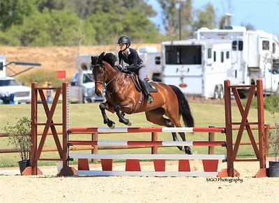Paso Robles Horse Park Kick-Off Schooling Show April 2018
