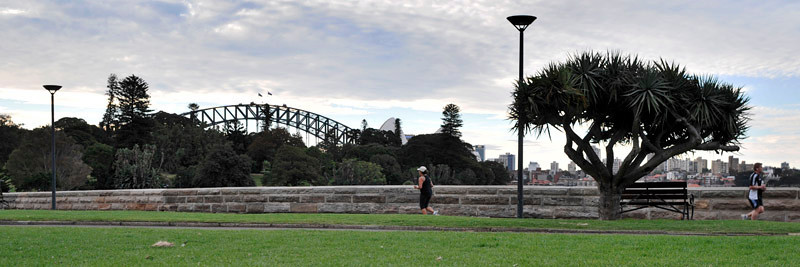 Running by the Botanic Gardens with wonderful views of the Sydney Opera House and Harbour Bridge