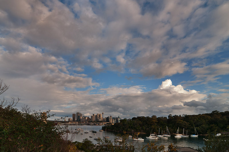 Waverton views