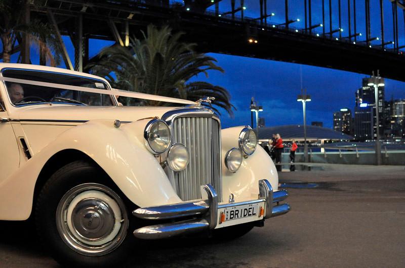 Bridel Jaguar... poor...