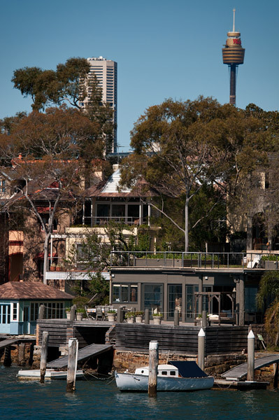 The Sydney tower from the Sydney harbour