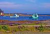Blue Rocks, Nova Scotia