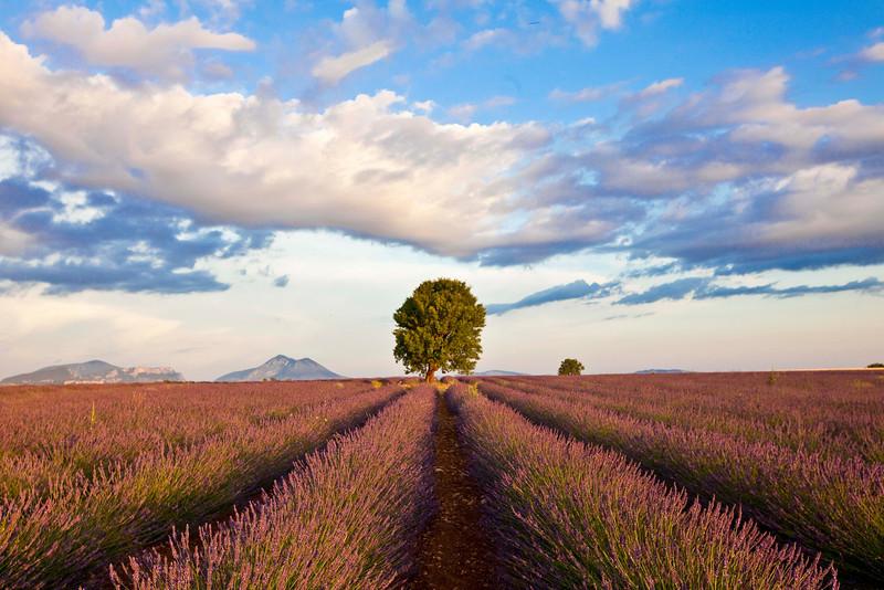 Solitude, Provence