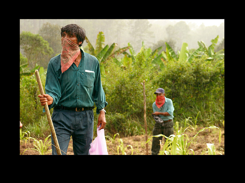 Chiapas, Mexico: Farmers plant corn as the rains begin to fall.<br /> <br /> The Zapatista struggle against the North American Free Trade Agreement (NAFTA):  On New Year's Day, 1994, the day NAFTA went into effect, indigenous communities throughout the State of Chiapas, Mexico, called the Zapatistas and named after the Emiliano Zapata who led the revolution in Mexico in 1910, staged a dramatic 12-day uprising.  Among their concerns was the potential demise of their economy resulting from the flood of imports that would ensue from the lifting of all tariffs on 45 basic agricultural imports, as well as their environmental and human rights being further eroded.  Their demands included an autonomous state and indigenous rights.<br /> In spite of their initial militant uprising, the Zapatistas (EZLN & FZLN) have spent much of the last twelve years training teachers and health workers while launching numerous innovative and non-violent peace initiatives.  <br /> On February 16, 1996, the Mexican government and the EZLN signed the San Andres Accords, granting the Zapatistas autonomy and land. <br /> Despite their peaceful subsistence, the government of Mexico has over the years responded brutally against the Zapatista's. Attacks have included abductions, detentions, torturing and beating of community members, and included the 1997 massacre of 45 unarmed civilians, mostly women and children, three days before Christmas in the town of Acteal.<br /> For this reason, many Zapatista community members wear bandanas on their faces to protect their identities and avoid potential State persecution.