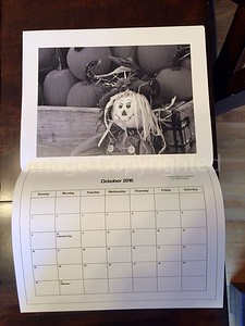 2016 Warren county fair fundraiser calendar