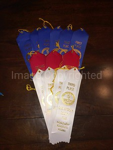 Ribbons won at 2014 Shenandoah county Va fair