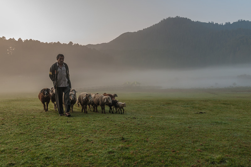 Dawn at the Khajjiar Valley