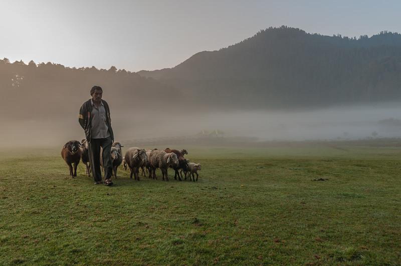 Dawn at the Khajjiar Valley