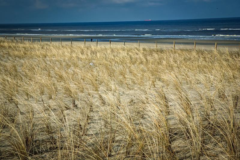 Biking along the North Sea