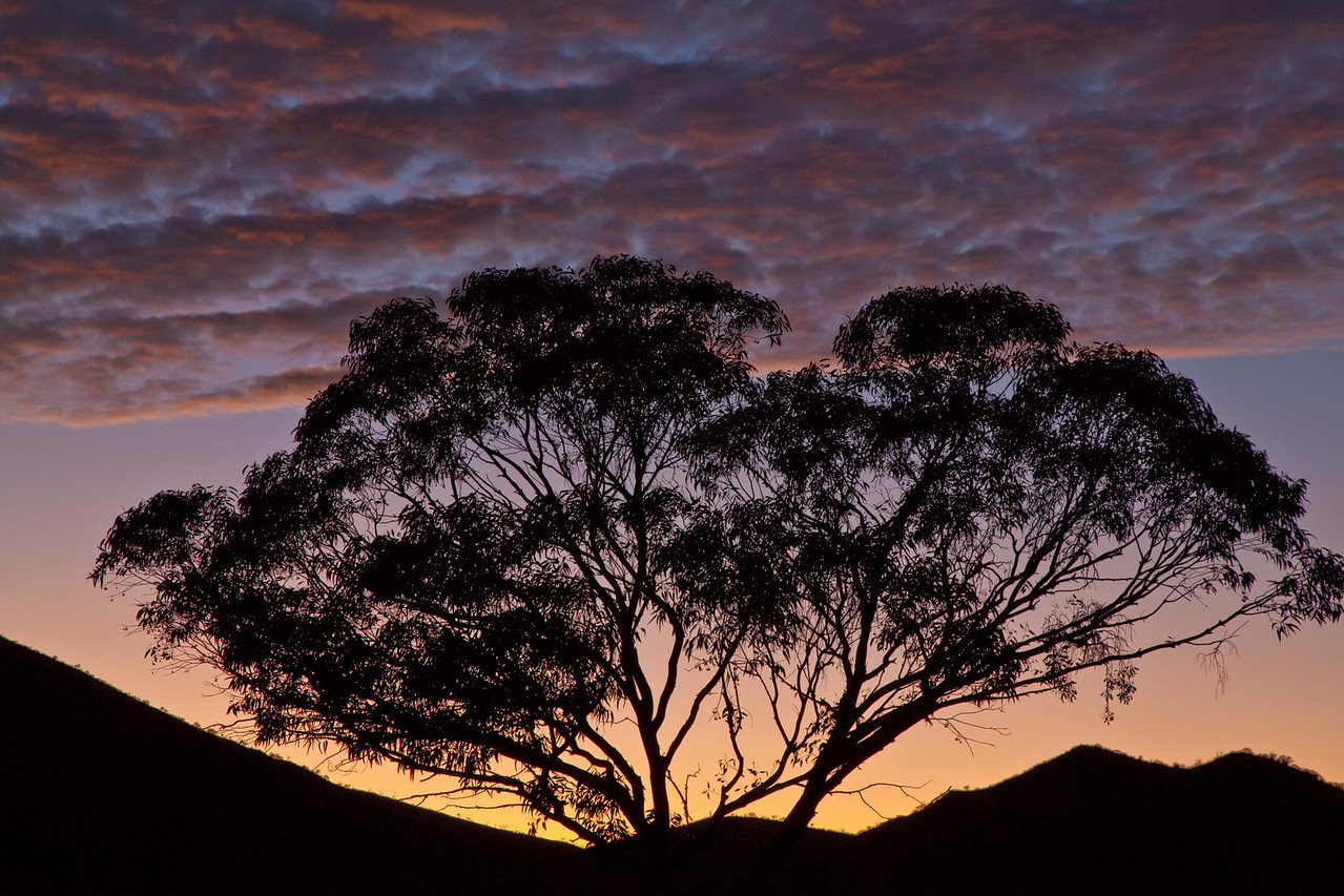 A new day, Arkaroola