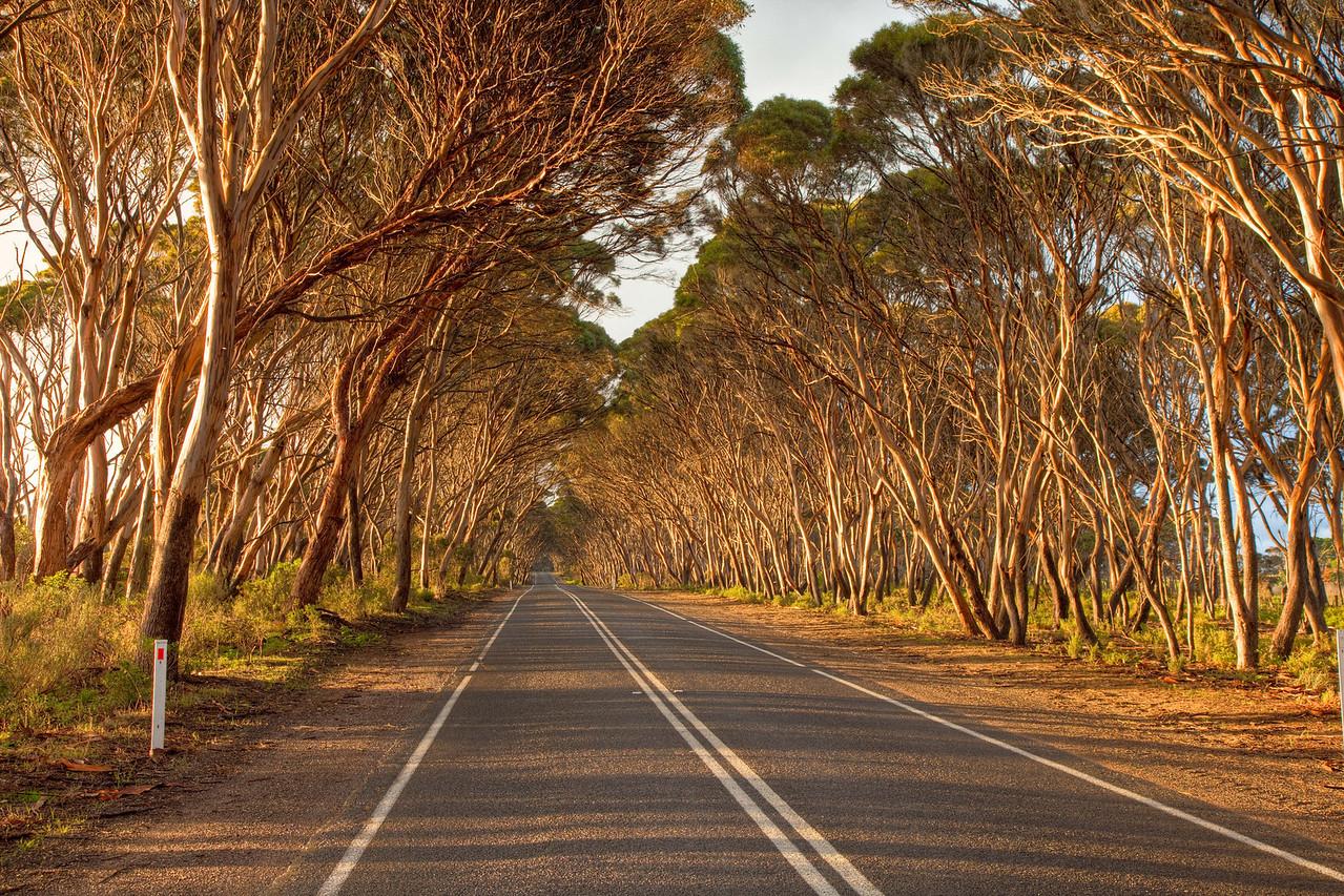 Approaching Penneshaw on Kangaroo Island