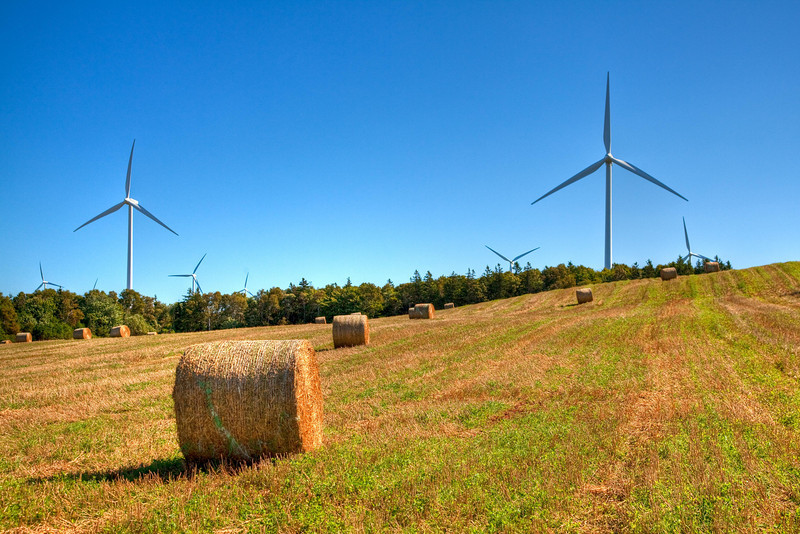 Wind farm at West Point